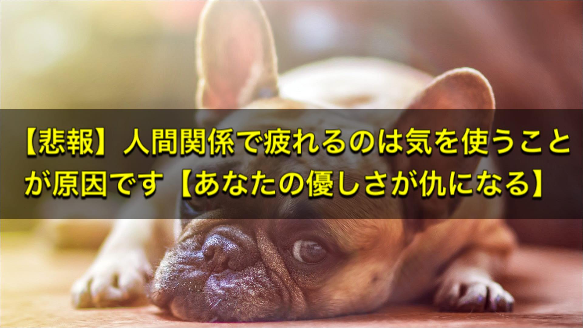 【悲報】人間関係で疲れるのは気を使うことが原因です【あなたの優しさが仇になる】